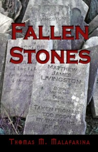 """Fallen Stones"" bookcover by Lawrence von Knorr"